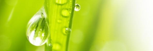 L'analisi biologica dell'acqua potabile